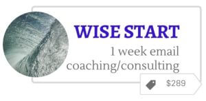 Wise Start one week coaching and consulting for introverted women by email
